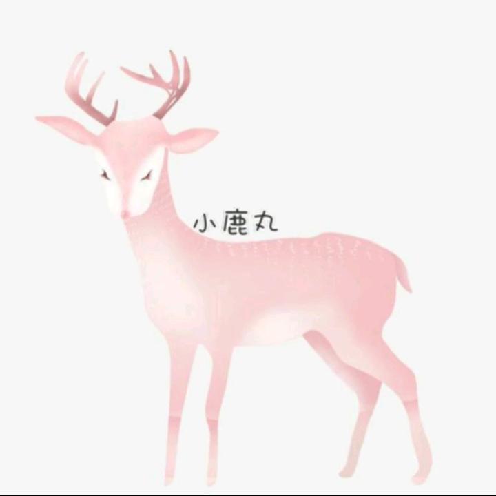 小鹿丸-鹿GG